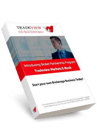 Introducing Broker ebook